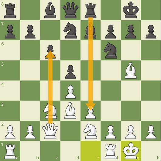Chess Terms: Basics to Learn by Heart!